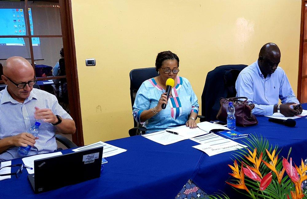 La directrice Yewande Odia, au centre, préside la retraite OSESG-B, 23 janvier 2020. ONU/Napoleon Viban