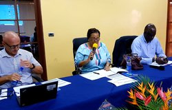 Director Yewande Odia (centre) chairs OSESG-B retreat, 23 Jan 2020. UN/Napoleon Viban